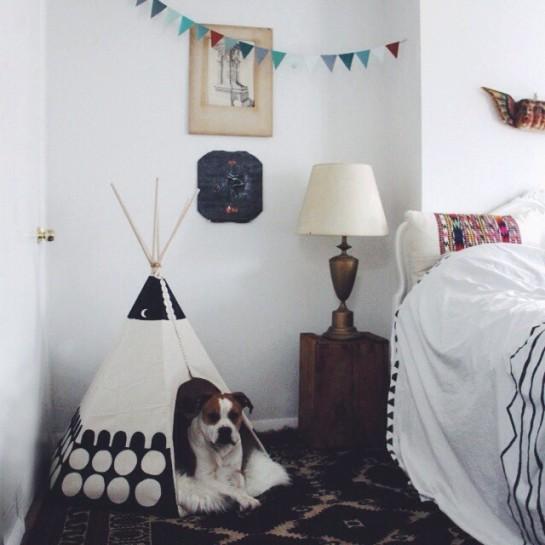 Ariele Alasko - teepee for dog