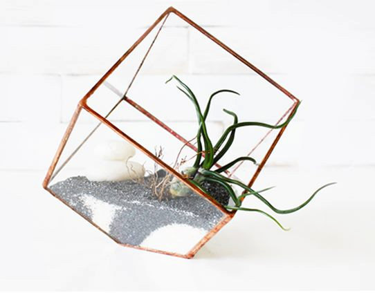 mapart.me:   ABJ glassworks - Earth Terrarium Kit